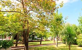 Alykes Park