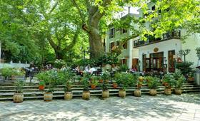 Kritsa Gastronomy Hotel (incl. auto)