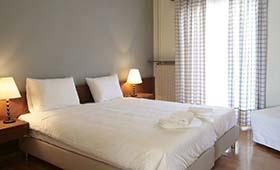 Theoxenia Hotel (incl. auto)