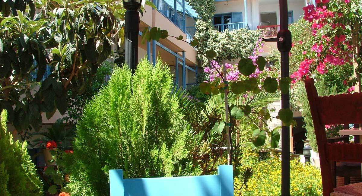 Villa Mertiza Mirtos Kreta